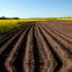 Stājas spēkā izmaiņas lauksaimniecības zemes iegādes atbalsta programmā - VOKA.LV
