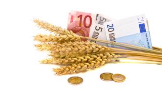 Sākas pieteikšanās atbalstam uz jaunradi vērstiem projektiem lauksaimniecībā un mežsaimniecībā - VOKA.LV