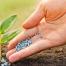 Latvijā aizliegs izmantot amonija karbonāta mēslošanas līdzekļus - VOKA.LV